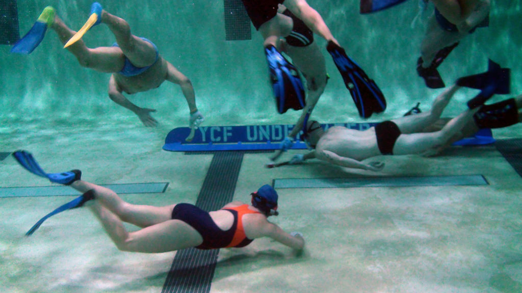 Save the dates Sept 6 & 7th Orlando will host an underwater hockey tournament.